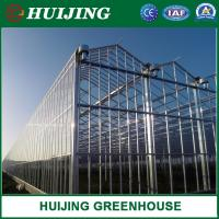 Buy cheap Modern Glass Greenhouse with Hot-Galvanized Steel Stable Structure Hydroponics Growing System for Strawberry/ Tomato from wholesalers