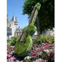 Wholesale Outdoor Garden Topiary Art Musical Instrument Volin Topiary Artificial Plants Sculpture from china suppliers