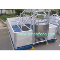 Buy cheap Anti Rust Pig Farrowing Crates For Animals Galvanized Pipe And PE Plate Materials from wholesalers