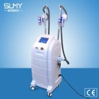 Buy cheap Weight Lose Machine for Salon Home Use Beauty Machine Cryo 40K Cavitation Ultrasonic Liposuction Body slimming Equipment from wholesalers