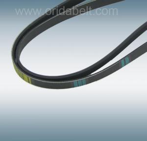 multi ribbed belt