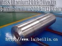 China titanium and titanium alloy ingot on sale