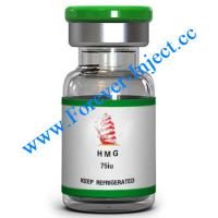 Buy cheap HMG | Peptide - Forever-Inject.cc Online Store | 75iu | Human menopausal gonadotropin from wholesalers