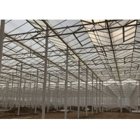 Buy cheap Sided Ventilated Cooling Pad Multi Span Pc Sheet Greenhouse from wholesalers