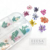 Buy cheap 12 Colors 3D Nail Art Decorations 3D Dry Flower Leaf Real Dried Flower Natural Floral Stickers from wholesalers