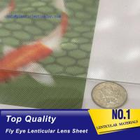 China PLASTICLENTICULAR lenticular fly eye sheets micro lens arrays-360 degrees 3d animation effect- fly eye dome lens sheets on sale