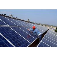Wholesale 36V High Efficiency PV Panels With Anti Aging Poly Silicon Panels Renewable Energy from china suppliers