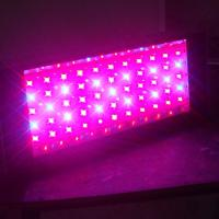 China Indoor 3W Small commercial led grow lights for weed with full spectrum with low consumption on sale