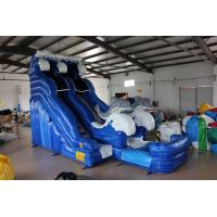 Buy cheap Dolphin Inflatable Water Slide For kids from wholesalers