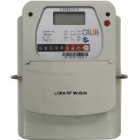 China G1.6 / G 2.5 / G4 Lora Prepaid And Postpaid Gas Meter , CA768 Prepayment Gas Meter STS on sale