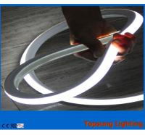 square 100leds/m white 12v 16x16.5mm led neon light for building Manufactures