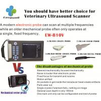 Wholesale Veterinary ultrasound scanner EW-B10V with convex for reproductive tract and diagnose pregnancy from china suppliers