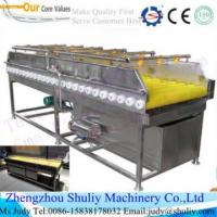 Buy cheap BRUSH CLEANINg machine for carrot/potato/ onion power weight electric onion chopper from wholesalers