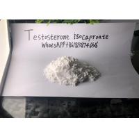 Buy cheap Testosterone Isocaproate Legal Injectable Steroids Drug Assist from wholesalers