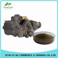Buy cheap Natural Treat Diabetes Innocuous Health Products Chaga Mushroom Extract Powder with Polysaccharides,Betulin from wholesalers