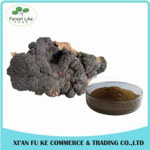 Natural Treat Diabetes Innocuous Health Products Chaga Mushroom Extract Powder with Polysaccharides,Betulin