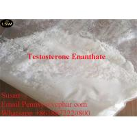 Buy cheap Injectable Anabolic Steroids Testosterone Enanthate CAS 315 37 7 White Powder High Puirty from wholesalers