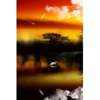 Buy cheap lenticular 3D picture made in china from wholesalers