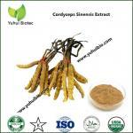 Buy cheap Cordyceps Mushroom Powder,pharmaceutical grade dual extracted Cordyceps from wholesalers
