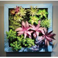 Buy cheap Square Wood Frame Hanging Plastic Succulents Wall Art Artificial Plants from wholesalers