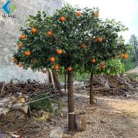 Wholesale Restaurant Decoration Artificial Fruit Tree , Artificial Orange Tree With Silk Fabric Leaf from china suppliers