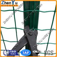 Buy cheap PVC/PE coated welded sheep wire mesh fence for sheep protect fence(cheap price,top quality) from wholesalers