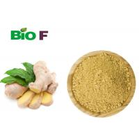 Buy cheap Instant Vegetable Extract Powder Non - Polluted Dried Oganic Ginger Powder from wholesalers