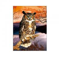 Buy cheap 30x40cm Size 3D Pictures Of Animals 0.6mm PET Material Durable product