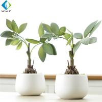 Wholesale Plastic Faux Green Plants , Home Decoration Good Fortune Bonsai 26cm Height from china suppliers