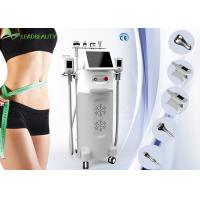 World leader!!! cryolipolysis 5 handles fat freezing multifunctional liposuction machine Manufactures