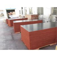 Buy cheap Film Faced Decorative Plywood Sheets 2 Times Hot Press High Strength Design from wholesalers