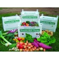 Wholesale CORRUGATED CARTON FRUIT BOX from china suppliers
