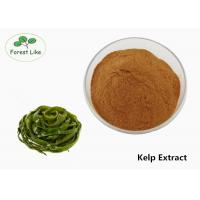 Buy cheap Brown Kelp Extract Powder Fucoxanthin Powder With Solvent Extraction from wholesalers