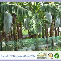 Wholesale Good sell China supplier fruit tree protection from china suppliers