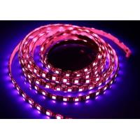 14.4w Low Lumen Strip LED Lights Outdoor Led Strip Lights High Intensity Manufactures