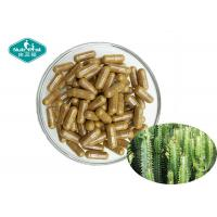 Buy cheap Natural Appetite Suppressant Energy Hoodia Cactus Capsules 500mg For Weight Loss from wholesalers