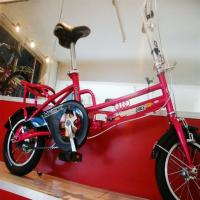 Wholesale professional bicycle manufacturer of folding bike for girls or boys with CE from china suppliers