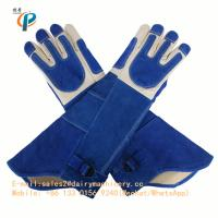 Buy cheap Blue Color Leather Animal Control Gloves , Animal Handling Gloves For Dog / Cat from wholesalers