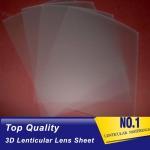 Buy cheap PLASTICLENTICULAR 75 lpi lenticular printing sheet-PP lenticular sheet array supplier China-3d lenticular lens for sale from wholesalers