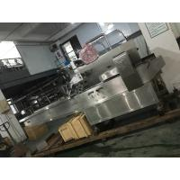 Wholesale Blanking Medicine Packaging Machine, PLC Control Auto Packaging Machine from china suppliers
