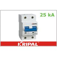 Buy cheap Compact Thermal Magnetic Circuit Breaker Double Pole 63A 80A 100A 125A from wholesalers