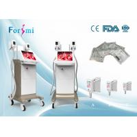 Buy cheap Cryolipolysis reviews 3.5 inch handle scree Cryolipolysis Slimming Machine FMC-I Fat Freezing Machine from wholesalers