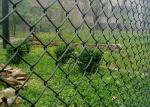 Buy cheap Decorative 50x50mm Galvanized Chain Link Fence 8 Gauge from wholesalers