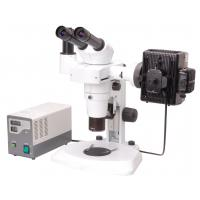 Buy cheap Zoom Stereo Microscope with Camera from wholesalers