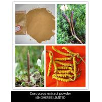 Buy cheap China Cordyceps Extract Powder 15%,20%,40%, Fine Light Yellowish Powder from wholesalers