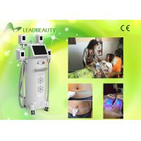 World leader 4 cryo head fatcell removal cryolipolysis fat freeze Manufactures
