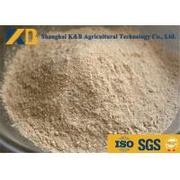 Buy cheap Non GMO Organic Brown Rice Protein Powder OEM Brand With 20kg Plastic Bag Package from wholesalers