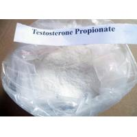 Wholesale Weight Loss Testosterone Anabolic Steroid Hormone Powder Testosterone Propionate from china suppliers