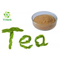 Buy cheap Green Tea Leaf Extract Powder 98% Polyphenol Catechin Camellia Sinensis Powder from wholesalers