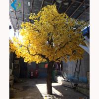 Wholesale Faux Indoor Ginkgo Tree , Fiberglass Trunk Autumn Gold Ginkgo 5-10 Years Life Time from china suppliers